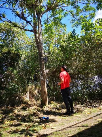 José Miguel Ortega haciendo una prueba del robot en un árbol.