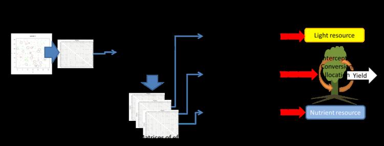 Gráfico que detalla la investigación de Salazar.