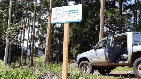 bosque-con-letrero-del-corredor-biologico-