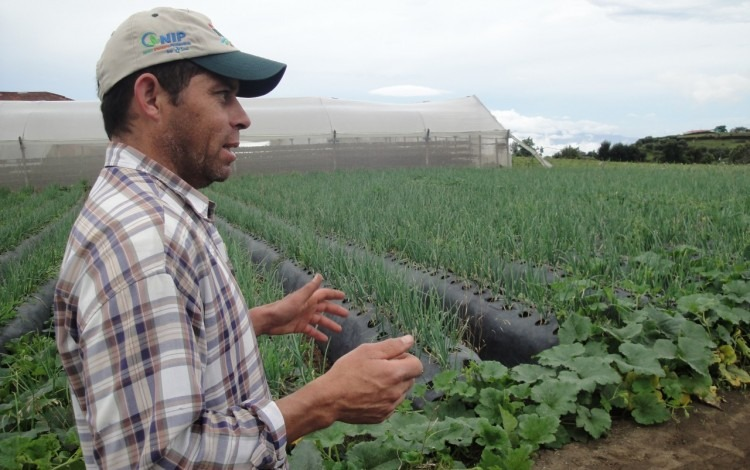 agricultor con su cosecha