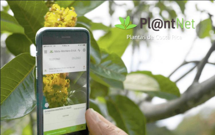 aplicacion plantnet