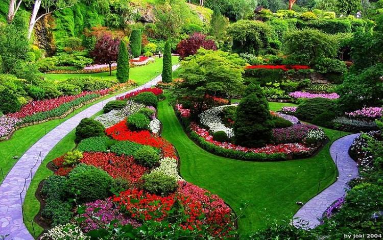 jardin de diversos colores