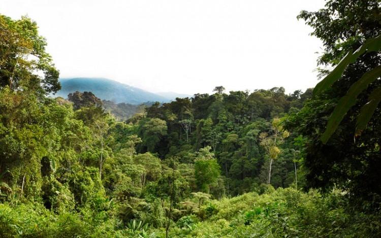 montañas de talamanca