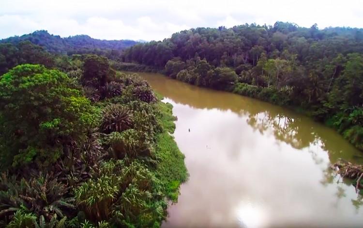 vista aérea del río la estrella