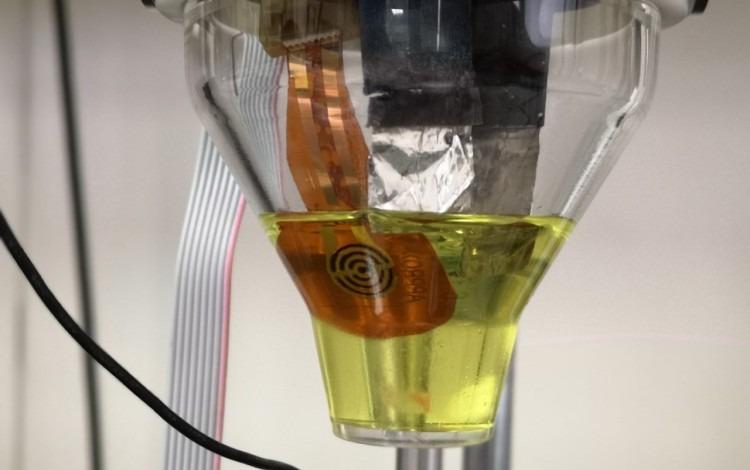 imagen de un sensor que se coloca en el agua para medir plaguicidas