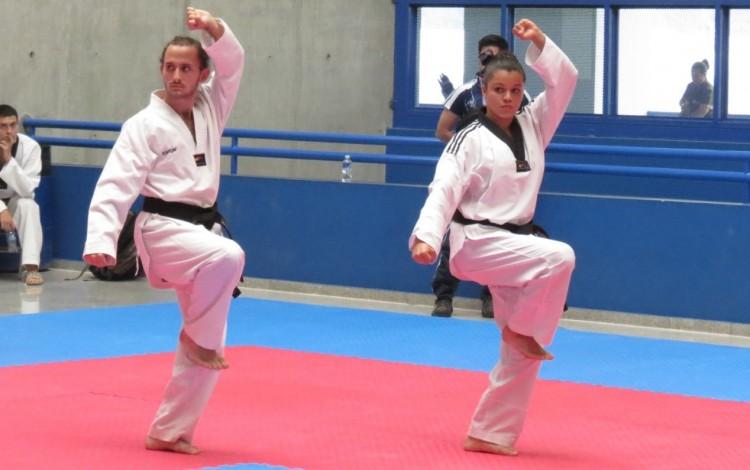 taekwondo tec