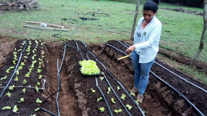 estudiante_paola_porras_cultivando_lechuga_