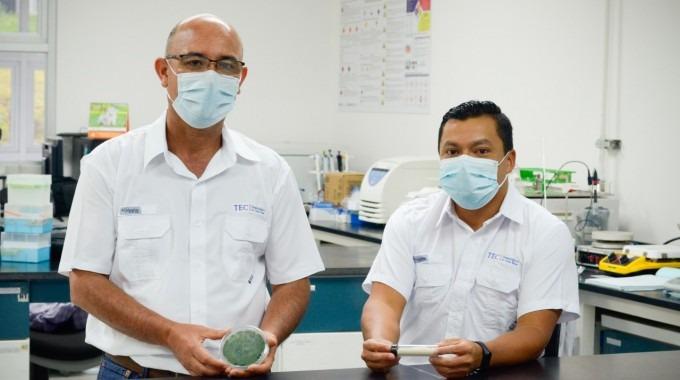 Científicos del TEC muestran los hongos utilizados y el producto final que atacará las enfermedades en los cultivos de las plantas.