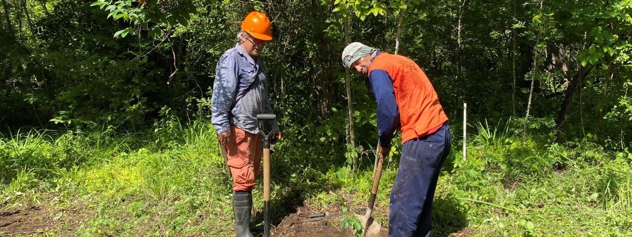 imagen de dos hombres sembrando un árbol
