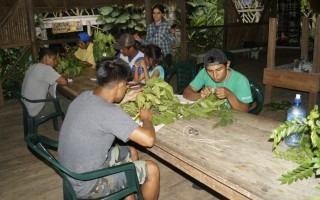 Los participantes de la comunidad de Shuabb estudian las especies de su zona.