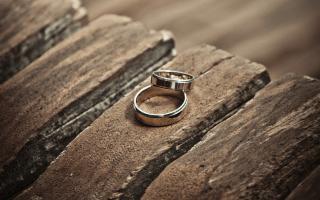 imagen de unos anillos de matrimonio