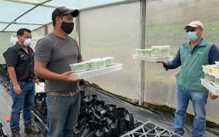 Un hombre recibe plantas en contenedores transparentes.