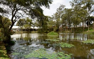 Vista del lago de la Sede Central del TEC en Cartago (Foto: Ruth Garita/OCM)