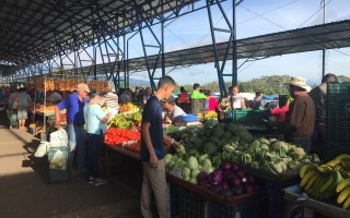 feria_agricultor_costa_rica_