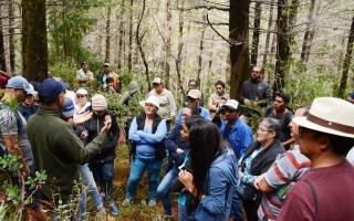 Un profesor le explica a varias personas en medio de los árboles dañados.