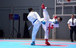 peleadores de karate