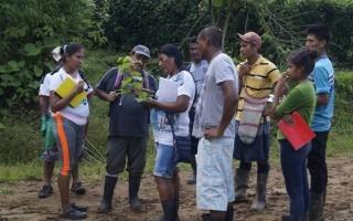 imagen de un investigador capacitando a varios indígenas en Talamanca sobre las especies arbóreas.