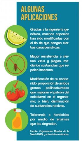 Algunas aplicaciones de los OGM