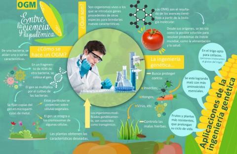 OGM, entre la ciencia y la polémica