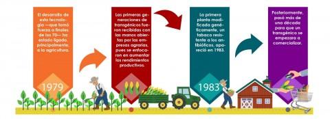 Desarrollo de los OGM