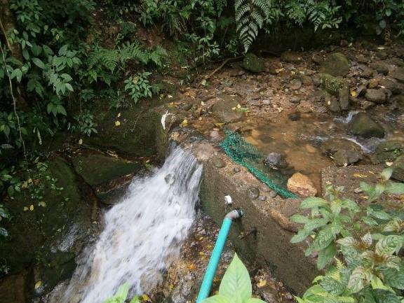 Toma de agua fuente superficial para abastecimiento humano en un ASADA