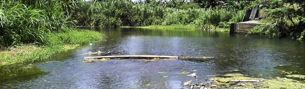 cauce de río