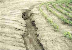 Erosión de suelo