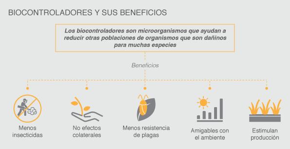 Biocontroladores y sus beneficios