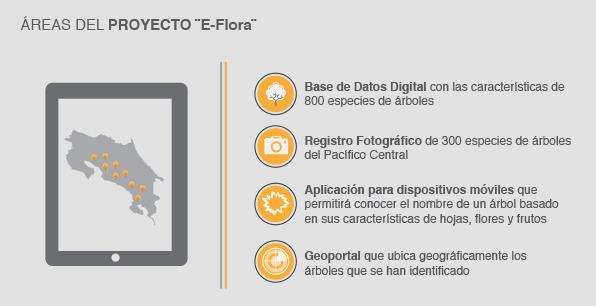 """Áreas del proyecto """"eFlora"""""""