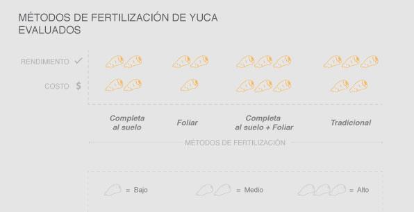 Métodos de fertilización de yuca evaluados