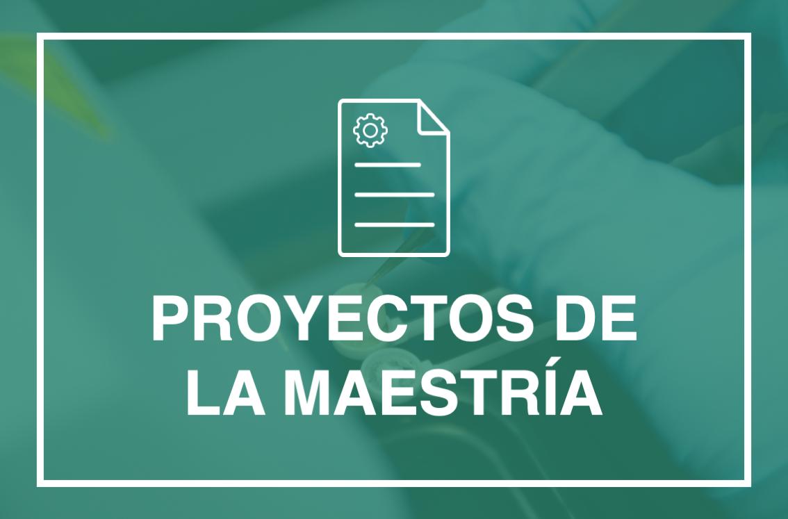 banner para proyectos de la maestrías