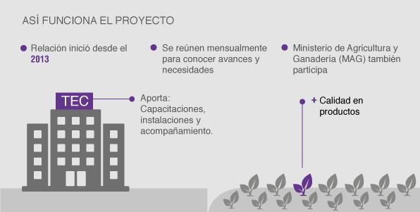 infografia_tec