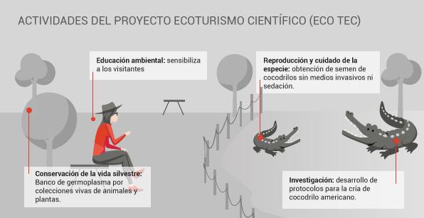 infografía__