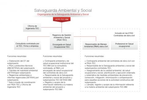 Organigrama Salvaguarda Ambiental y Social