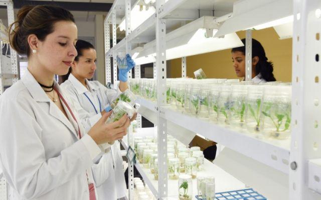 TEC proyecta más mujeres en carreras de ingeniería
