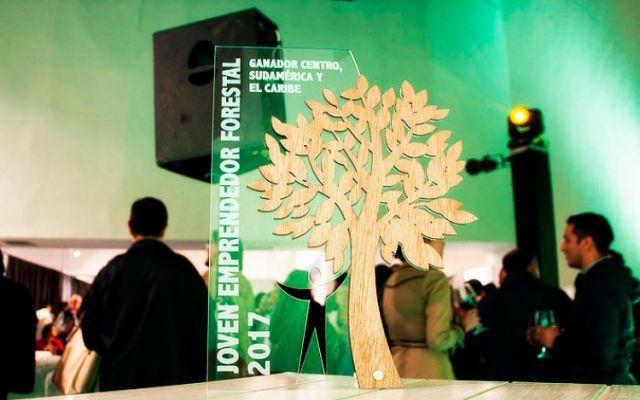 Iniciativa de bolsos de madera destaca en certamen: Joven Emprendedor Forestal
