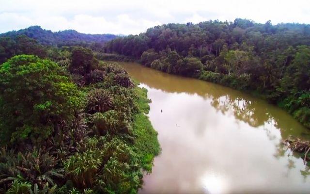 Prevención de desastres por desbordamientos en el río La Estrella (Video)