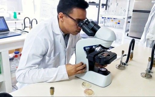 Student observing through a microscope, in a laboratory.