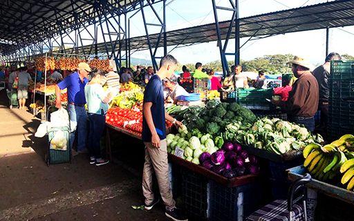 Frutas y verduras en una feria del agricultor.