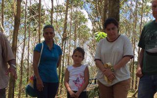 grupo de ingenieros forestales
