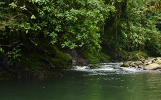 rio de san ramón