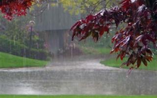 Agua de lluvia estancada