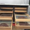 Muestra de cacao en proceso de secado en el sistema solar pasivo